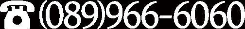 (089)966-6060
